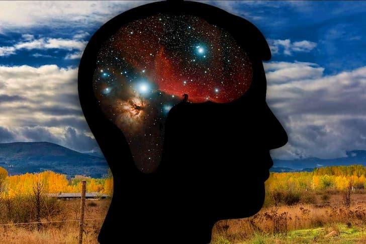 cerebro y galaxias(1)