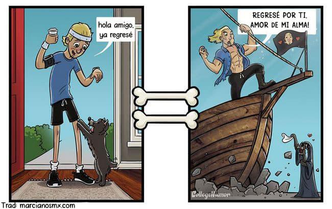 como los perros ven el mundo comic 1
