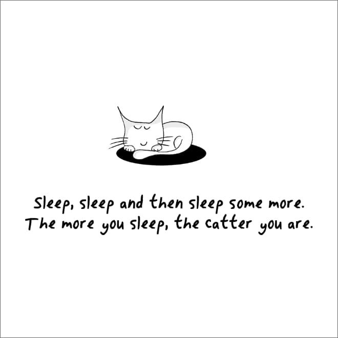 guia convertirte en gato (1)
