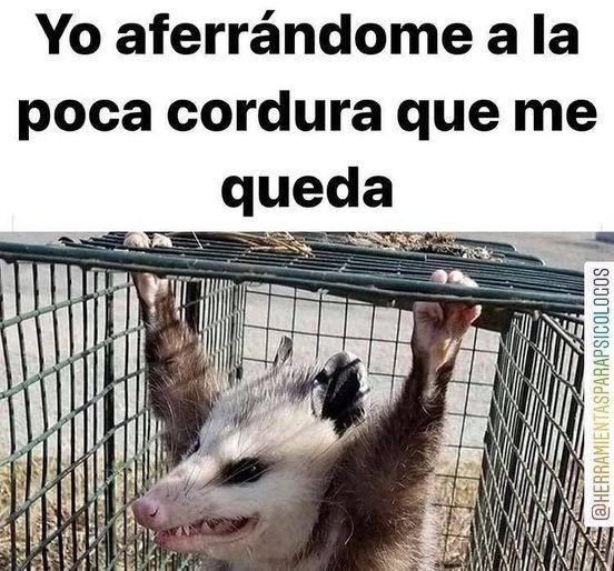 Marcianadas 460 04122020001853 (1)