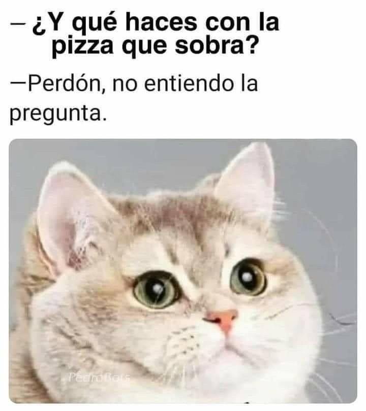 Marcianadas 460 04122020001853 (10)