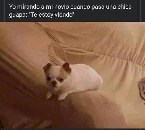 Marcianadas 460 04122020001853 (169)