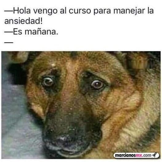 Marcianadas 460 04122020001853 (185)