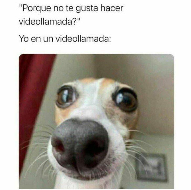 Marcianadas 460 04122020001853 (210)