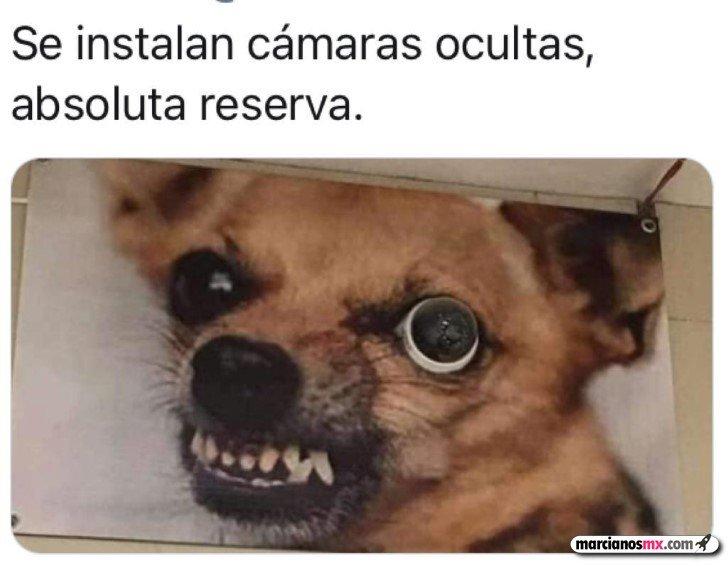 Marcianadas 460 04122020001853 (222)