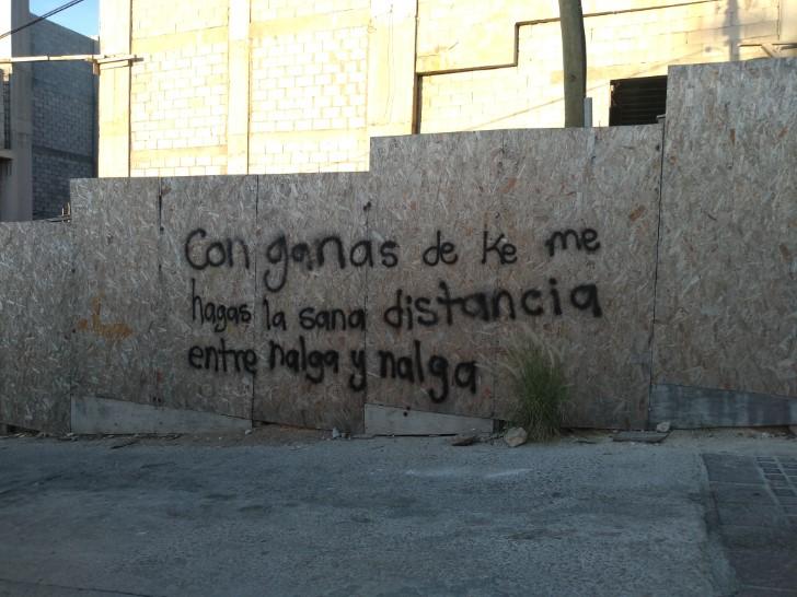 Marcianadas 460 041220201407 (7)