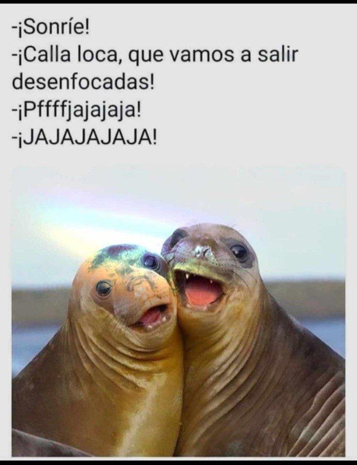Marcianadas 461 11122020001418 (190)