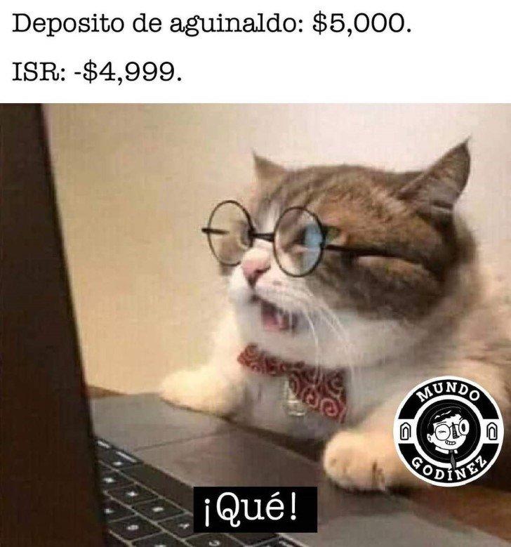 Marcianadas 461 11122020001418 (3)
