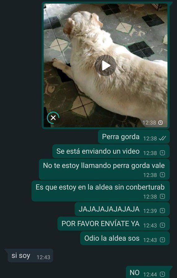 Marcianadas 462 18122020001440 (180)