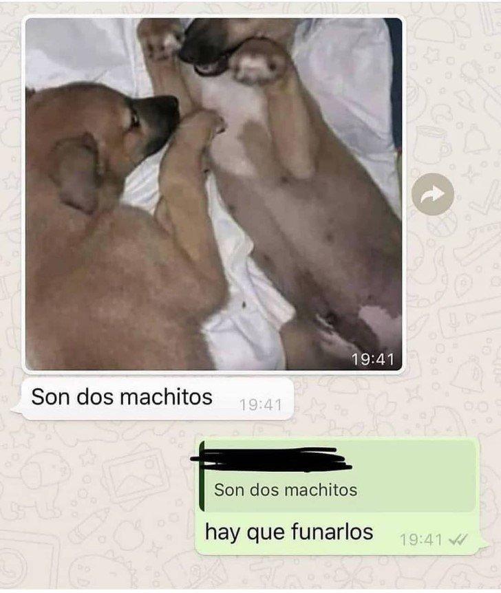 Marcianadas 463 01012021001513 (15)