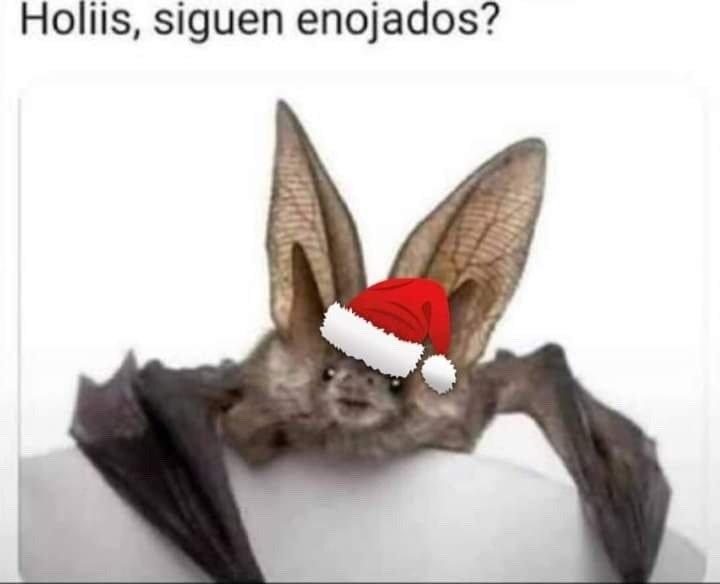 Marcianadas 463 01012021001513 (18)
