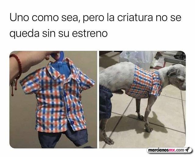 Marcianadas 463 01012021001513 (365)