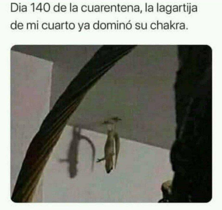 Marcianadas 463 01012021001513 (412)