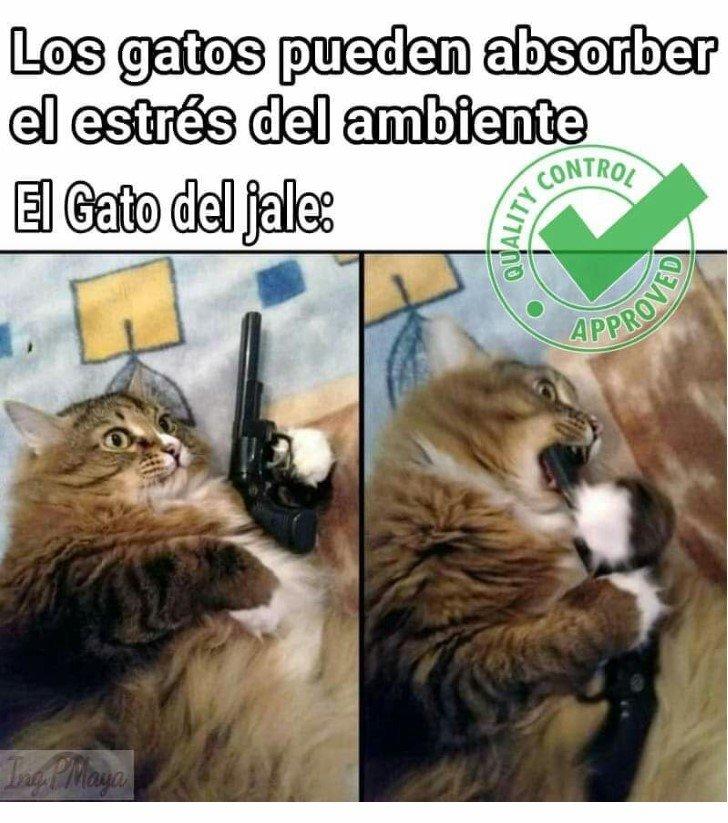 Marcianadas 463 01012021001513 (429)