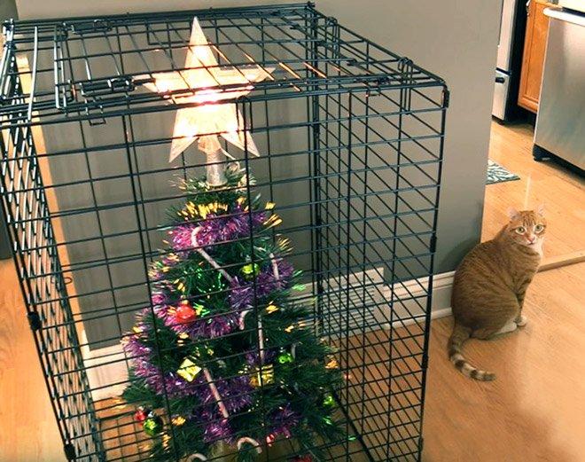 protegiendo arboles de navidad de las mascotas (21)