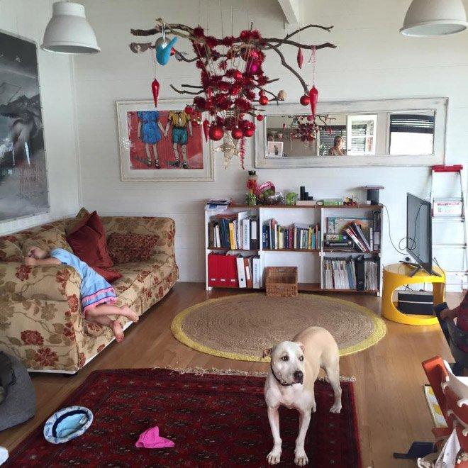 protegiendo arboles de navidad de las mascotas (7)