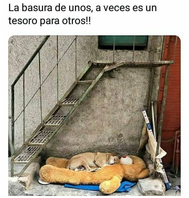 Marcianadas 464 080120211445 (179)