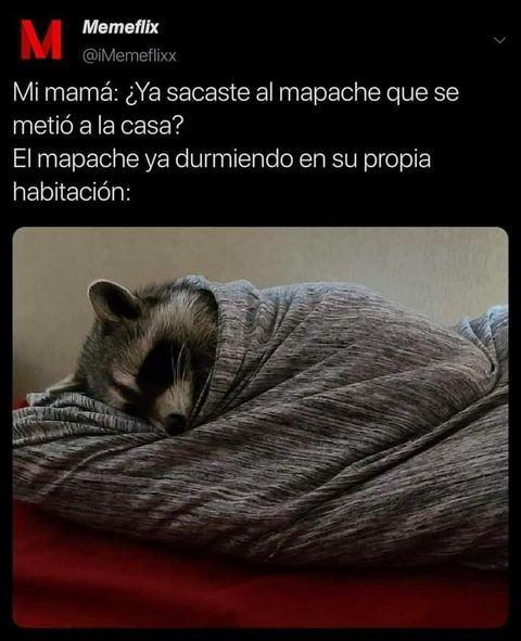 Marcianadas 464 080120211445 (258)