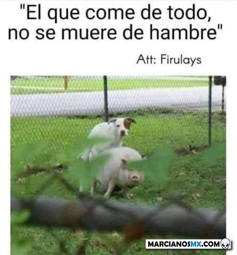 Marcianadas 464 080120211445 (269)
