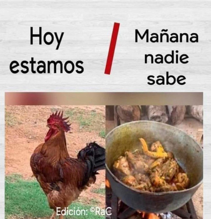 Marcianadas 464 080120211445 (39)