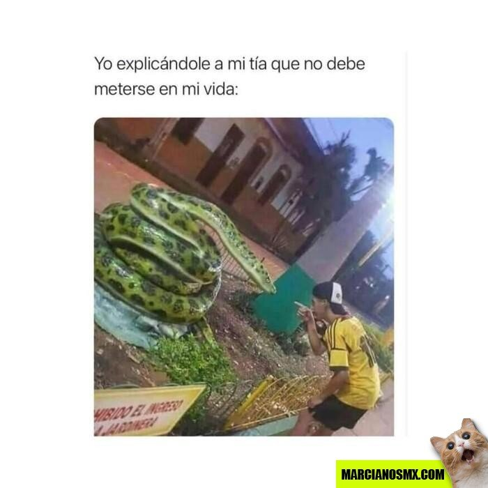 Marcianadas 465 15012021001425 (254)