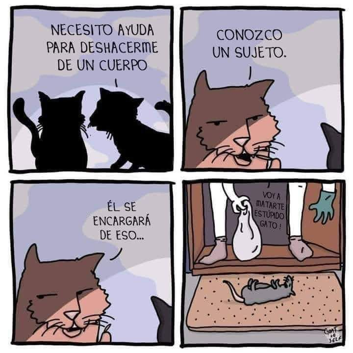 Marcianadas 465 150120211020 (45)