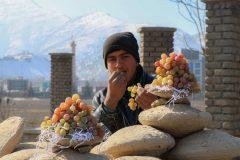 Gangina: rudimentaria técnica afgana para conservar uvas frescas por meses