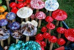 Se inyecta hongos psilocibios y le crecen en las venas