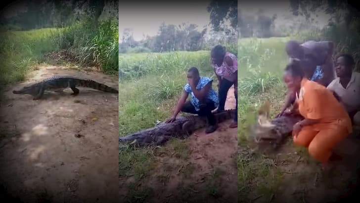 mujer atacada cocodrilo en Ghana(1)