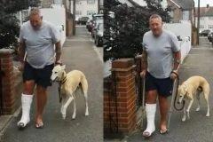 Lleva a su perro cojo al veterinario sólo para descubrir que lo imitaba
