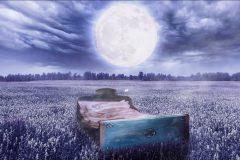 Luna y Sueño humano