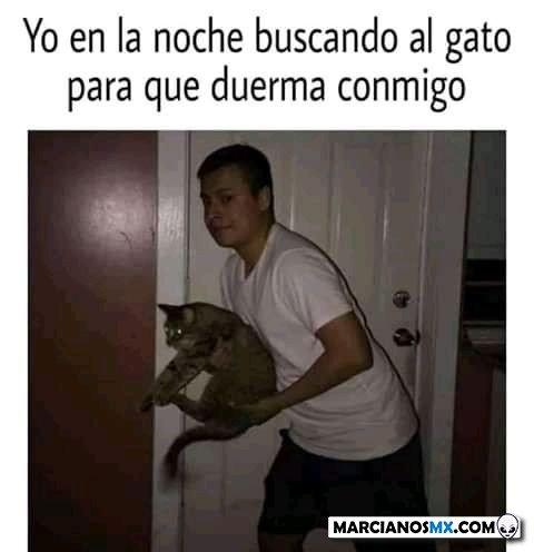 Marcianadas 468 052021001445 (259)