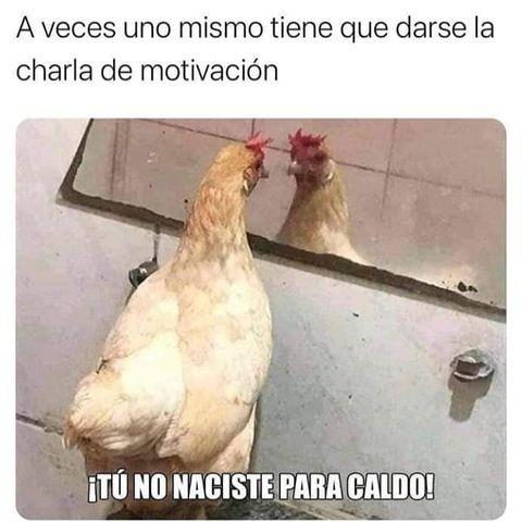 Marcianadas 468 052021001445 (46)