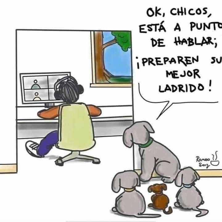 Marcianadas 470 19022021001433 (263)