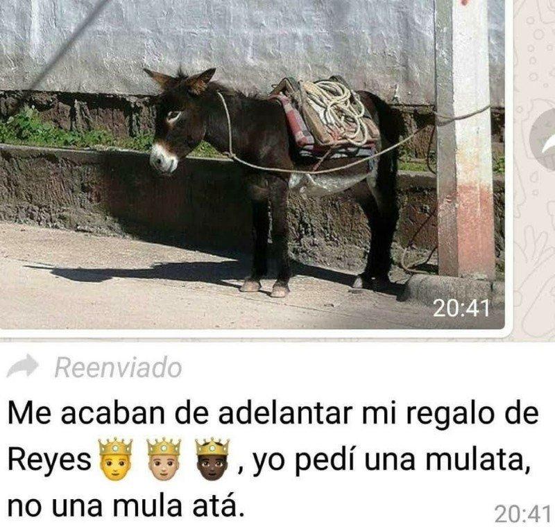 Marcianadas 471 26022021001418 (194)