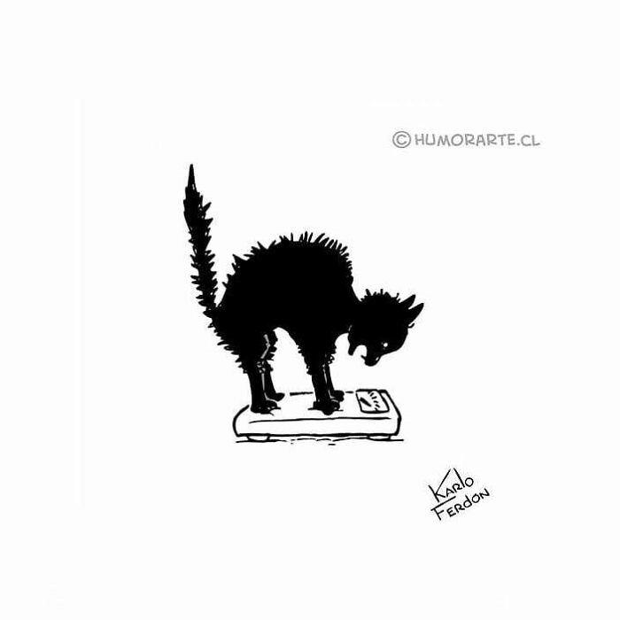 karlofredon comix gato