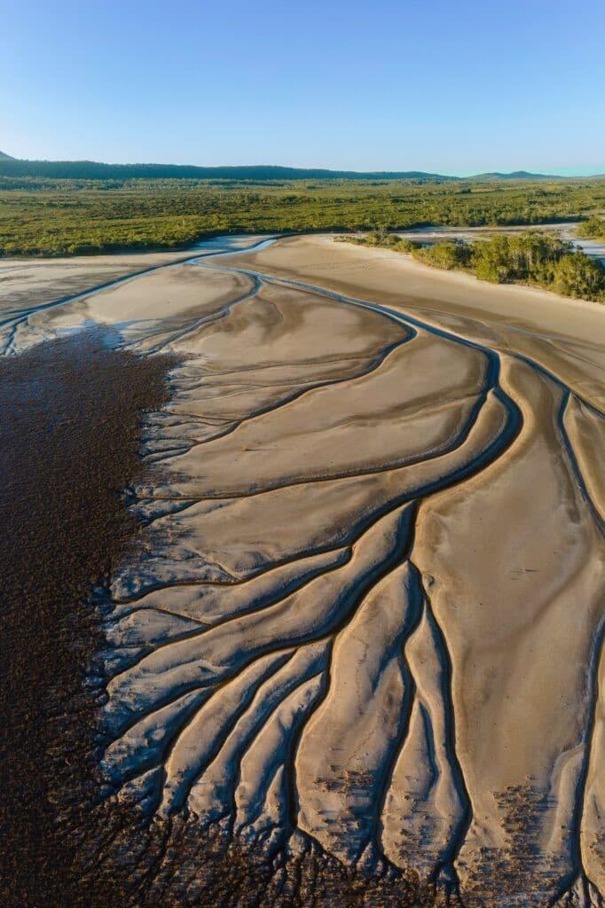 lago Cakora arbol de la vida en Australia (4)