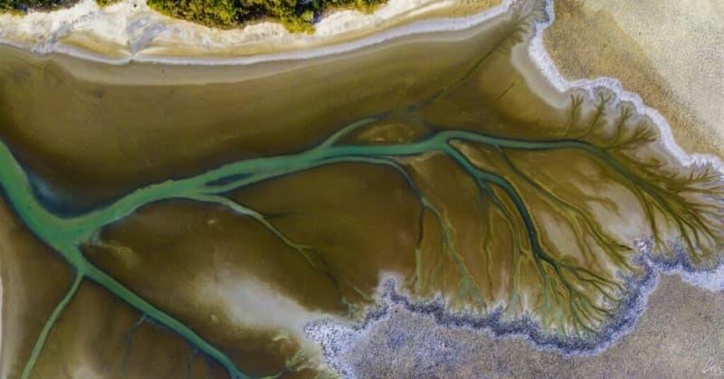 lago Cakora arbol de la vida en Australia (5)