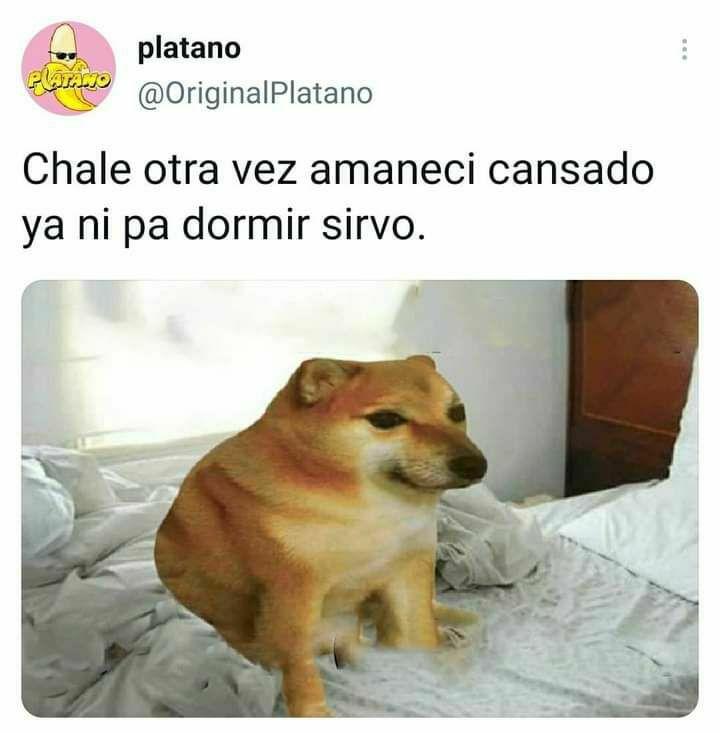 Marcianadas 472 05032021001530 (249)