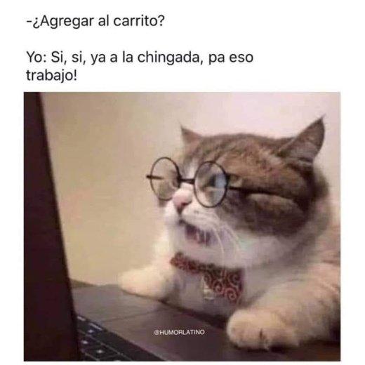Marcianadas 472 05032021001530 (46)