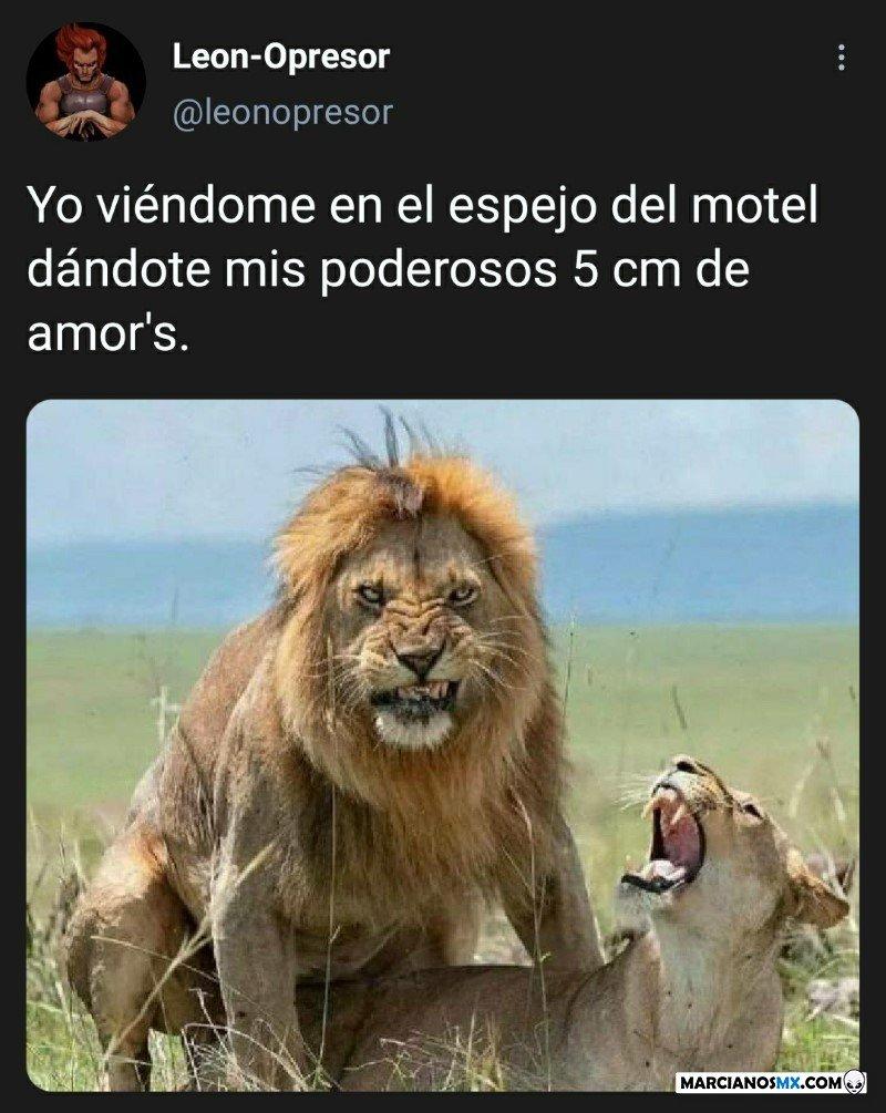 Marcianadas 472 05032021001530 (51)