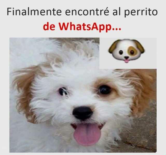 Marcianadas 473 12032021001806 (144)