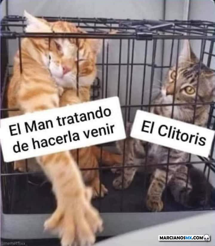 Marcianadas 473 12032021001806 (30)