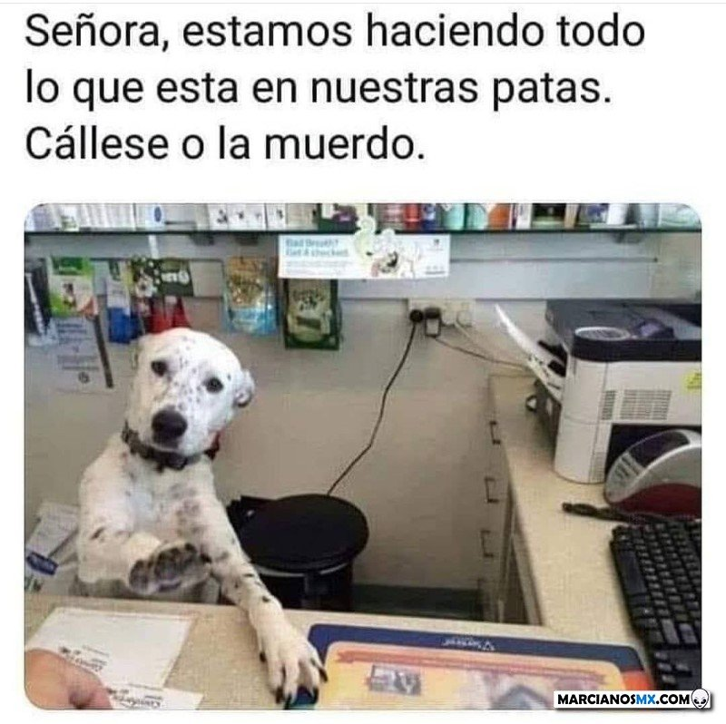 Marcianadas 475 26032021001447 (140)