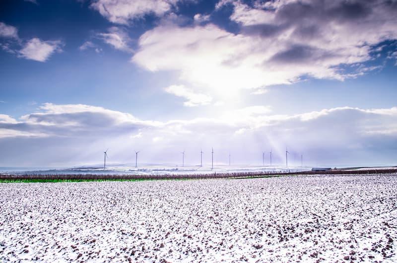 campo cubierto de blanco(1)