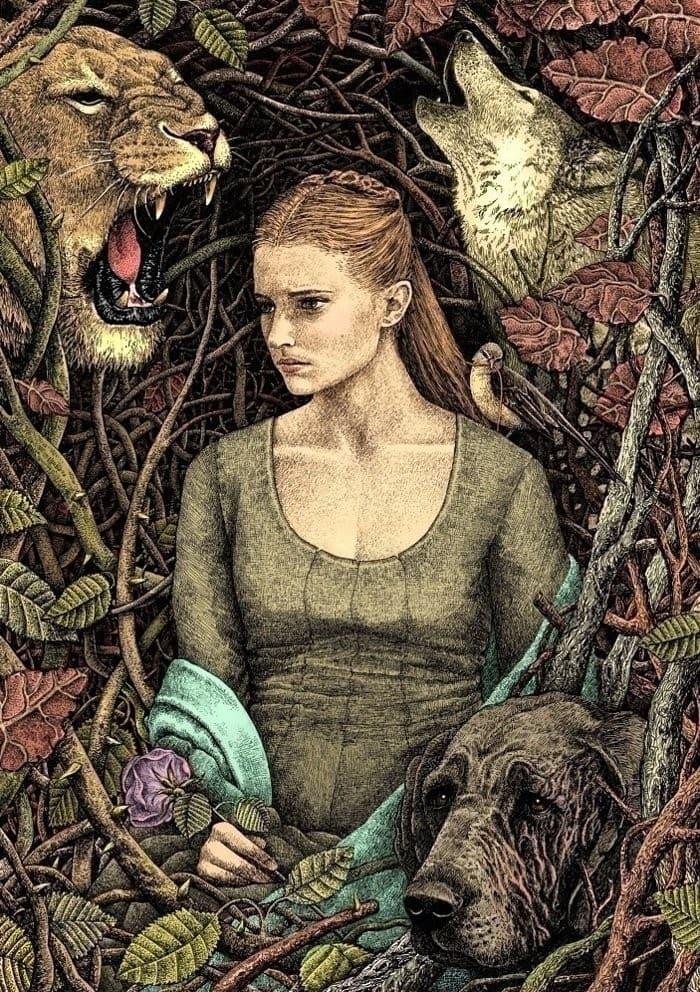 ilustraciones cuentos de hadas y fantasia (6)