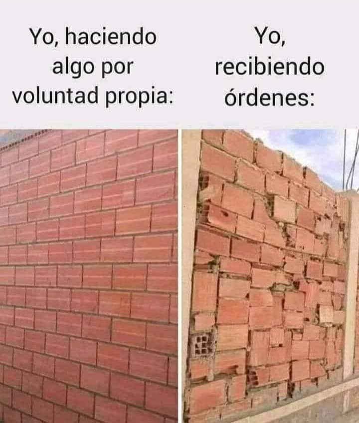 Marcianadas 476 020420210013399 (134)