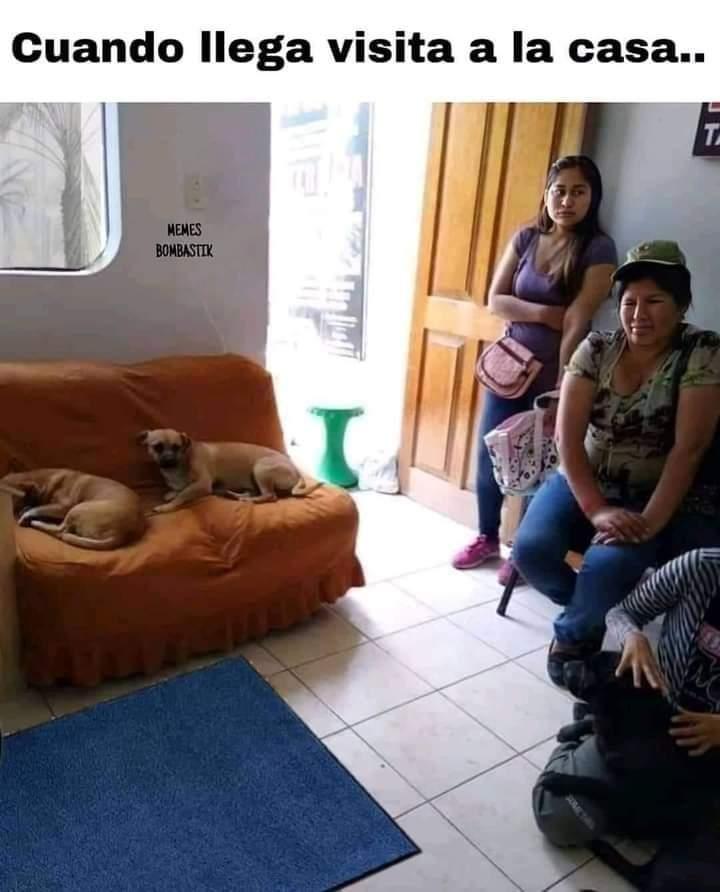 Marcianadas 476 020420210013399 (148)