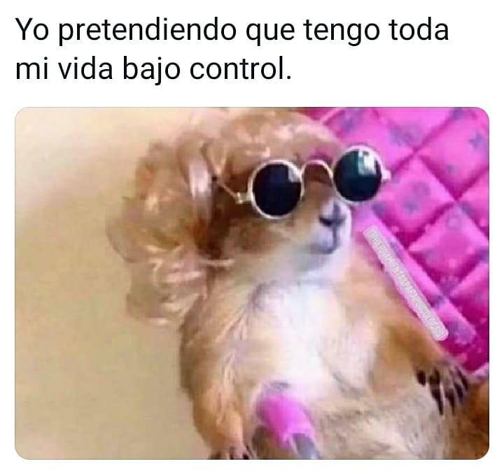 Marcianadas 476 020420210013399 (208)