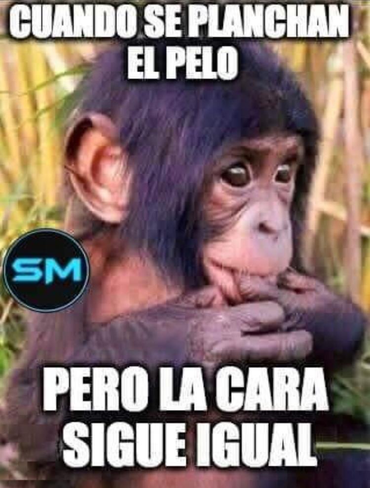 Marcianadas 476 020420210013399 (299)